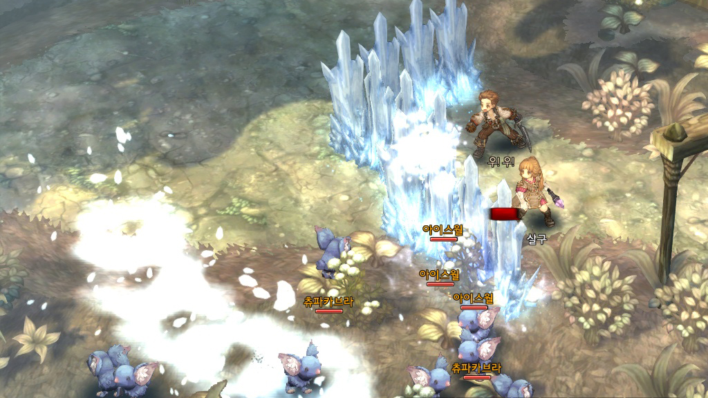 Tree of Savior - Gameplay Combat Screenshot