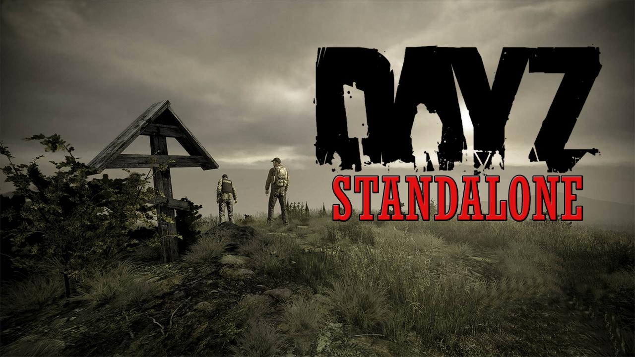 DayZ SA - FallenTV - Imagem 01