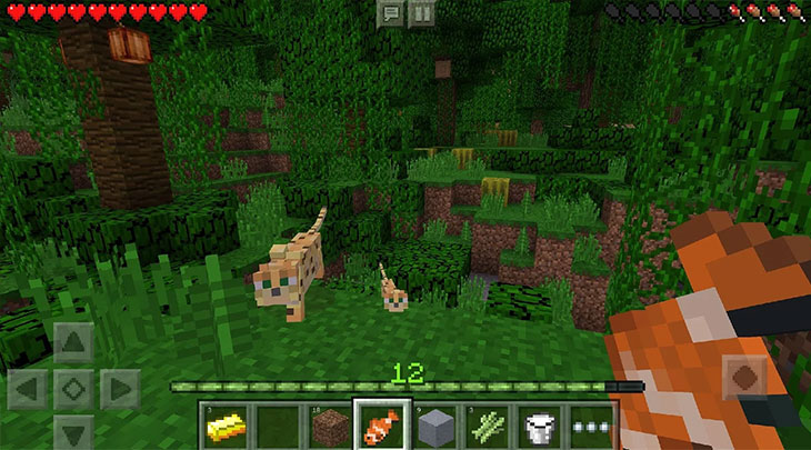 minecraft-pocket