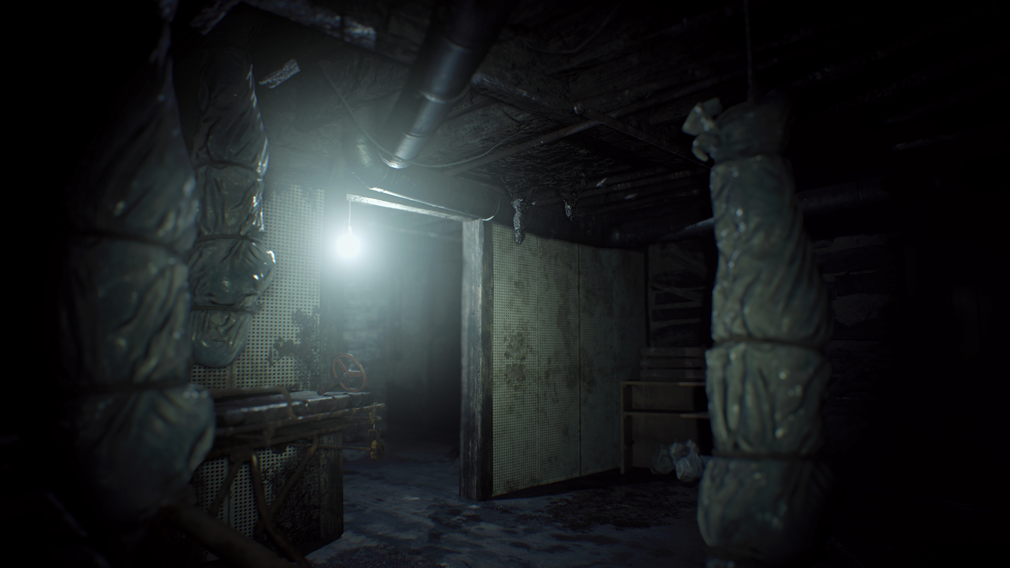 Resident Evil 7 Midnight Screen