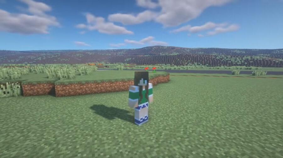Jogador constrói réplica da Terra em escala real dentro de Minecraft