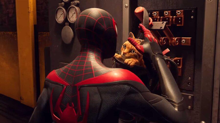 Spider-Cat é destaque em novo vídeo de Spider-Man: Miles Morales